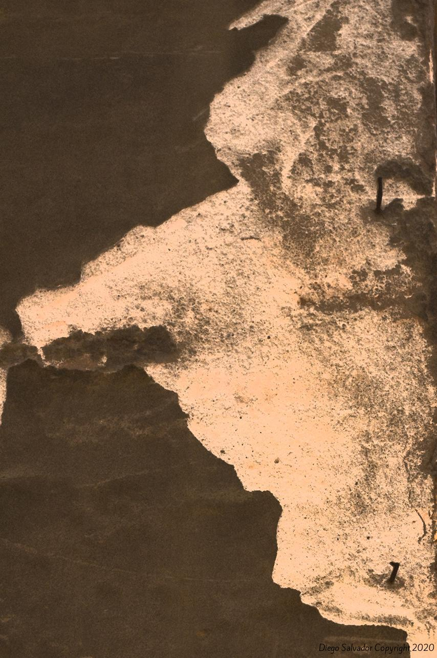 2011 - Venetian's nose - Diego Salvador