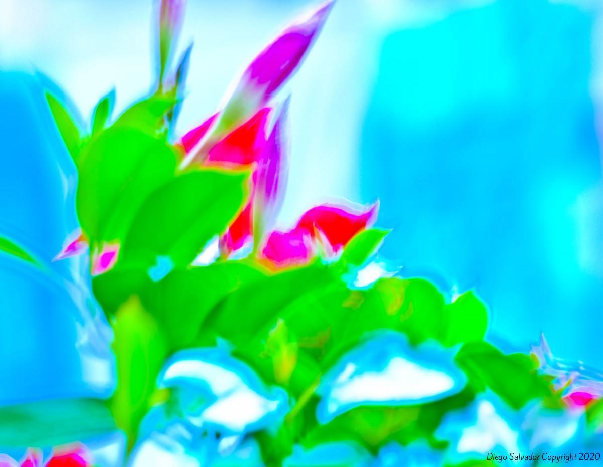 2012-Futurist-flower-5-Diego-Salvador