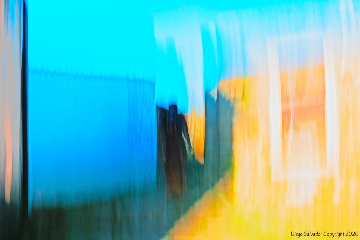 2014 - 10 Veils of Colors - Diego Salvador