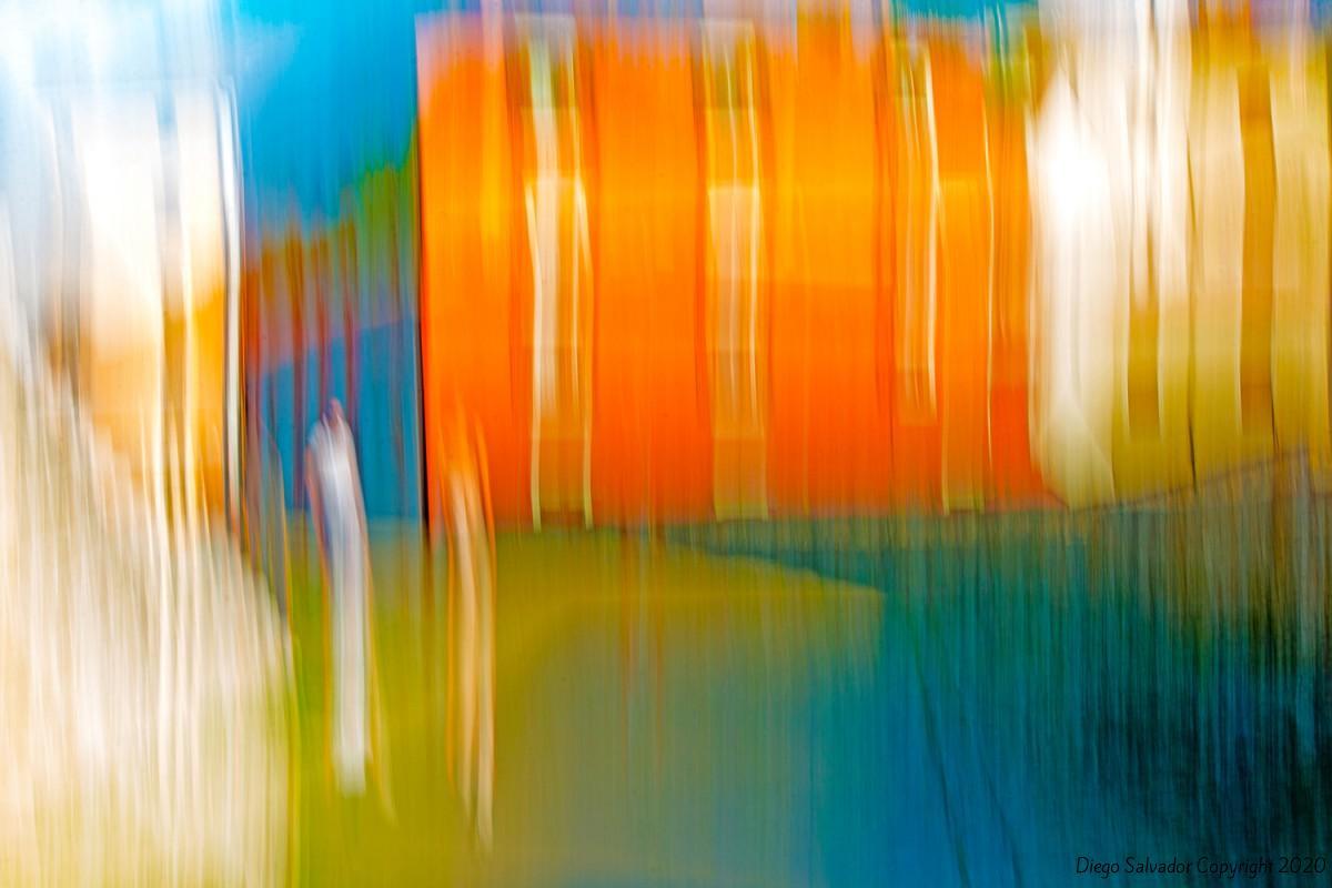 2014 - 11 Veils of Colors - Diego Salvador