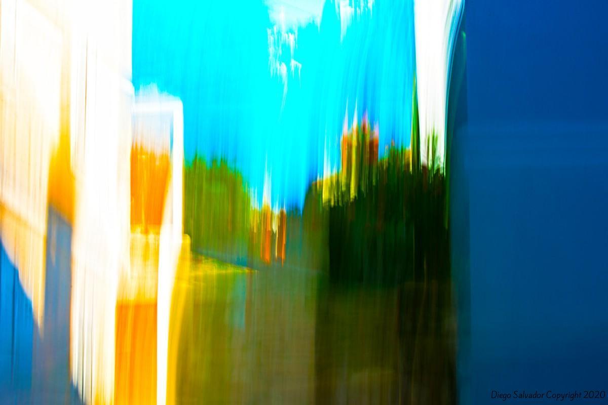 2014 - 9 Veils of Colors - Diego Salvador