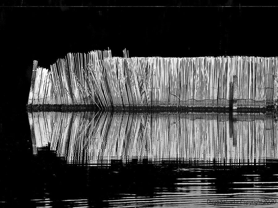 2012 - Belvedere canneto - Diego Salvador