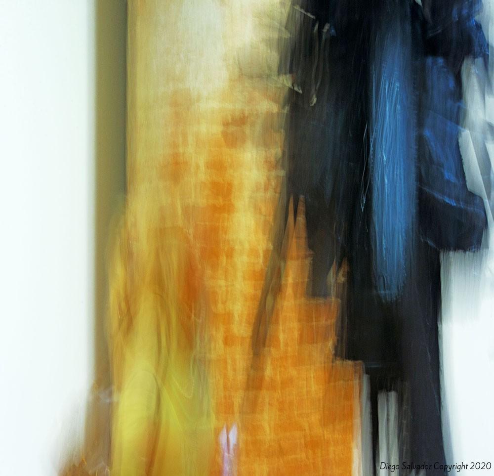 2015 - Contemplation9150 - Diego Salvador