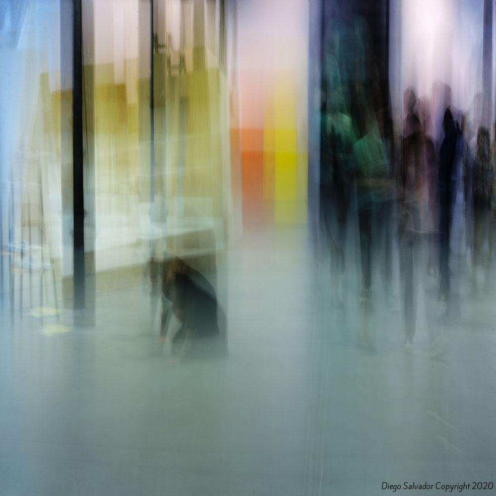 2015 - Contemplation9285 - Diego Salvador