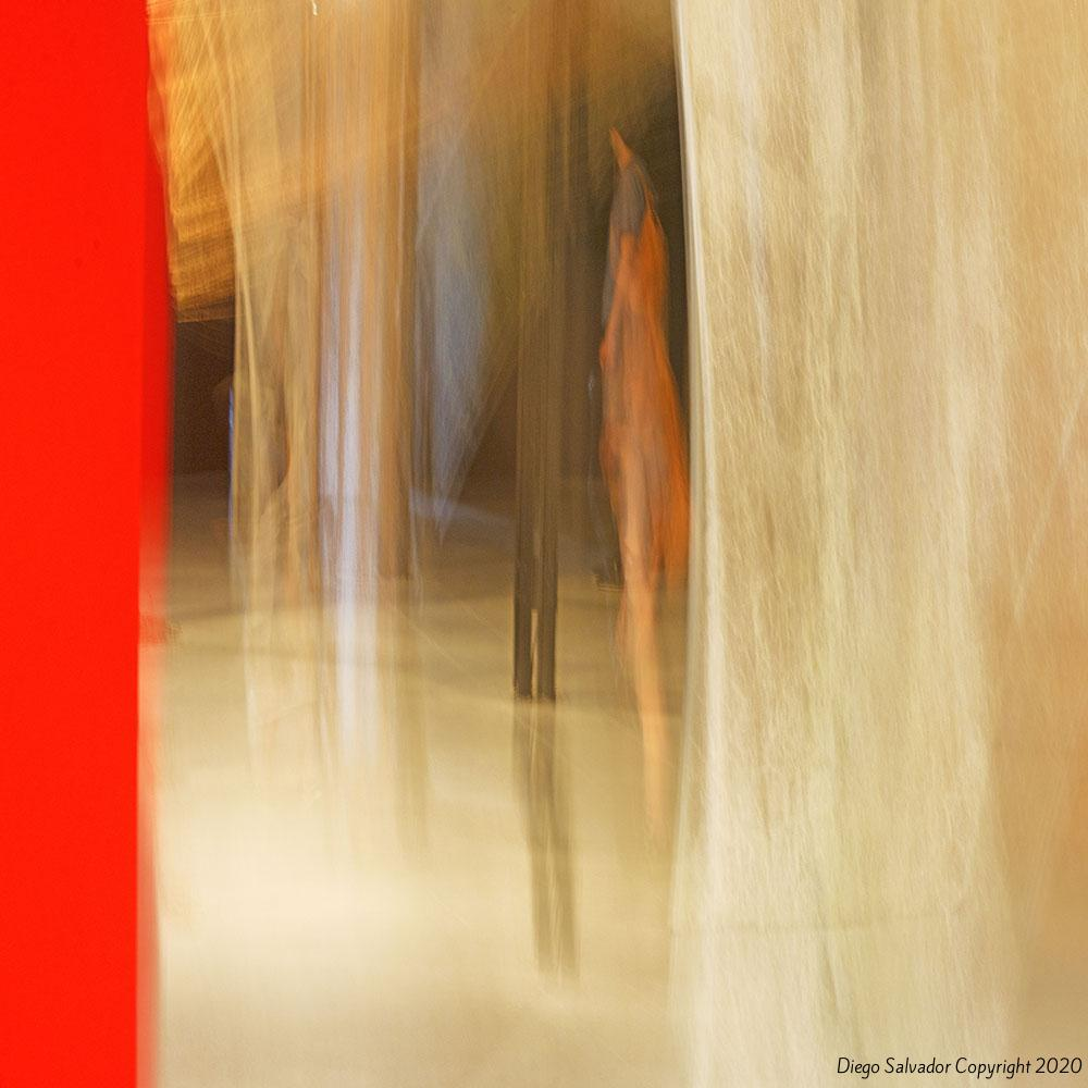 2015 - Contemplation9326 - Diego Salvador
