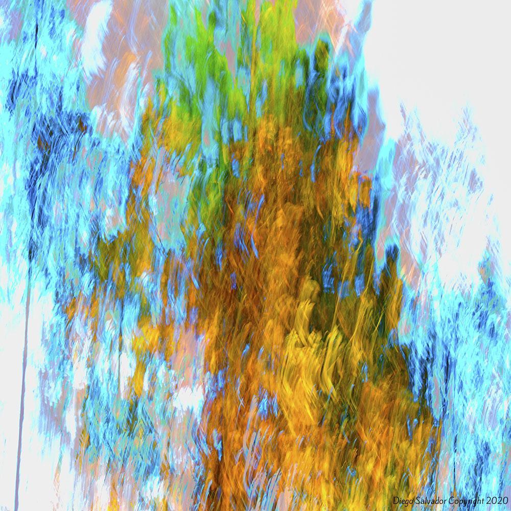 2015 - Fall's colors 9 - Diego Salvador